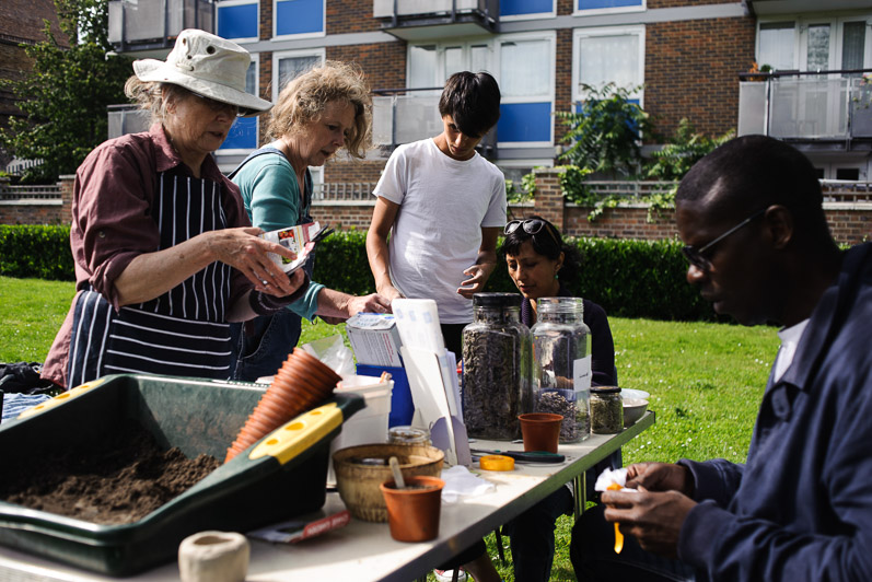 Bryant Court Garden Community Day